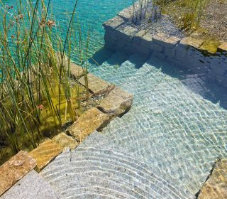 Teichbepflanzung und Teichgestaltung