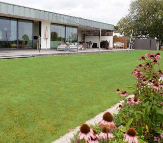 Große, gepflegte Rasenflächen