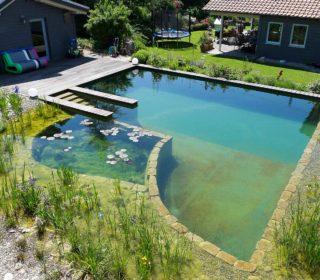 Großer Schwimmteich mit Seerosen