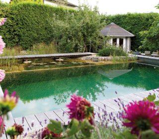 Schwimmteich mit Gartenhaus