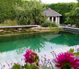 Schwimmteich mit sauberem Wasser