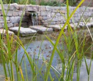 Steinmauer mit Wasserschütte und Steinweg
