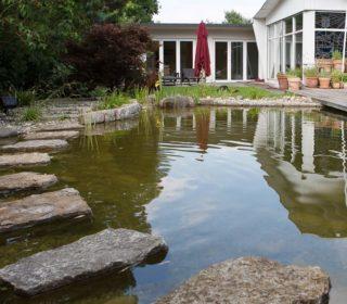 Gartenteich mit Steintrittfläche